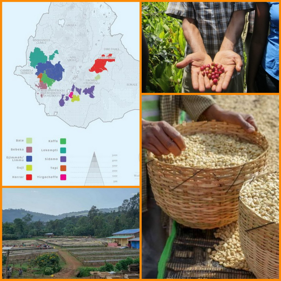 кофе эфиопия